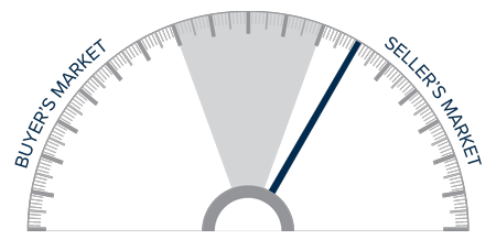 A speedometer graph indicating a seller's market on the Big Island, Hawaii.
