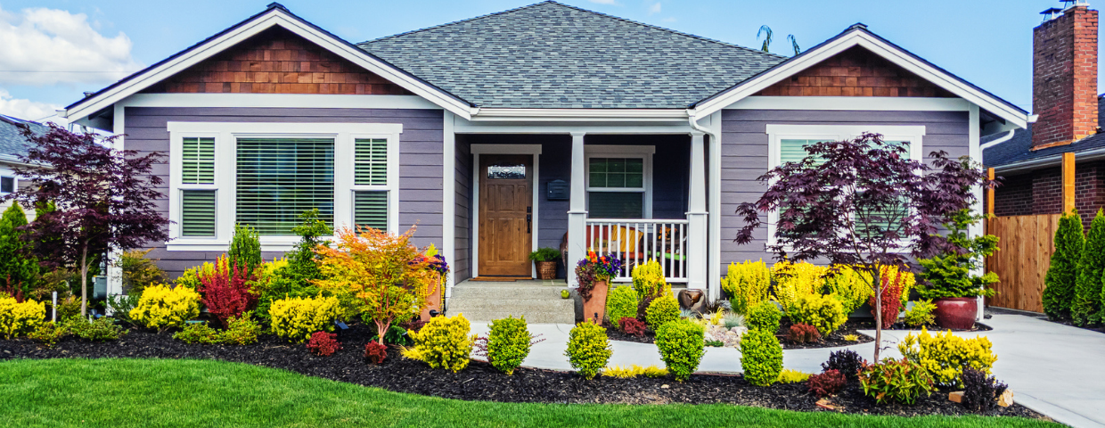 A craftsman house with a healthy green lawn and well-tended shrubbery lining the driveway.