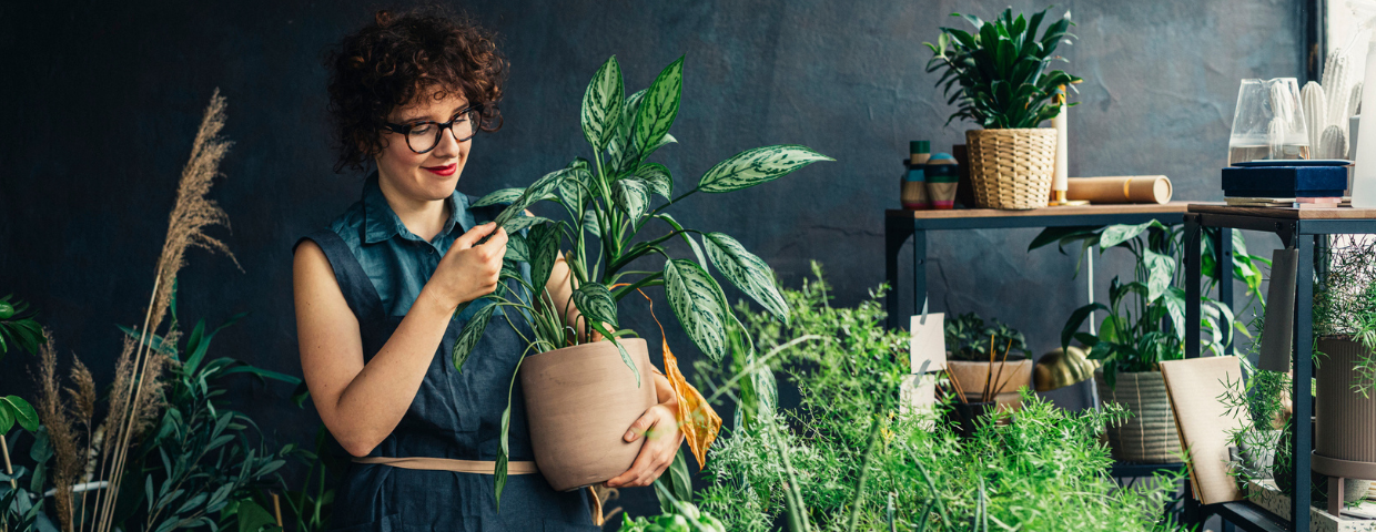 A woman tends to her house plants in an indoor garden.