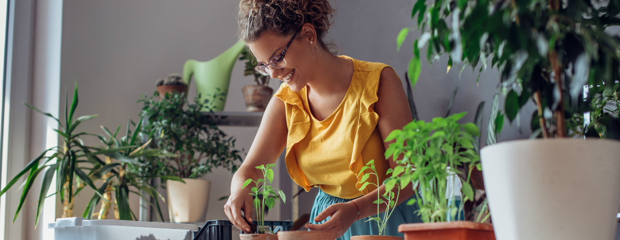A woman tends to her houseplants.