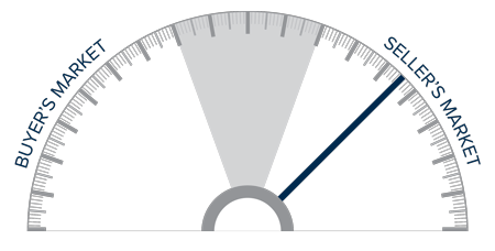 A speedometer graph indicating a seller's market on the Big Island of Hawaii.