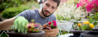 Man plants a flower in a pot in the foreground with his backyard garden in the background.